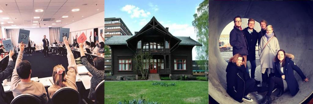 Profilundersøkelse for Velferdstinget i Oslo og Akershus