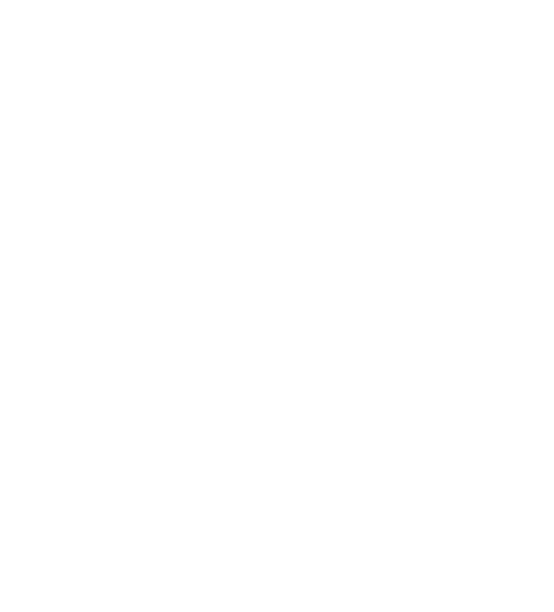 VT's Logo